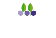 bistro-na-jagody